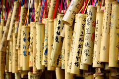 Wishing bamboo. A string of wishing bamboo Stock Images