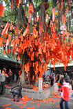 Wishing Tree Royalty Free Stock Image