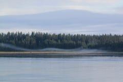 Wisps κατά μήκος της ακτής Στοκ Εικόνες