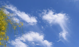 Wispy Cloud Tails in California Sky Stock Images