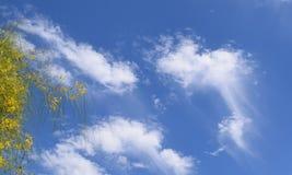 Wispy Obłoczni ogony w Kalifornia niebie obrazy stock