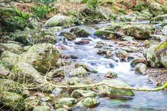 Wispy Stream Surrounded by Green stock photo