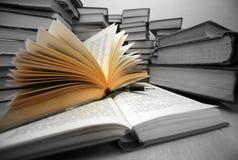 Wissen - Leuchte Lizenzfreie Stockfotos