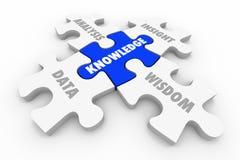 Wissens-Puzzlespiel bessert Datenanalyse-Einblick-Klugheit aus lizenzfreie abbildung