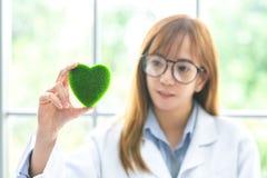 Wissenschaft Whitgrün-Geistverstand Grünes Herz in ihrer Hand auf Labor ein Hintergrund Schöne lächelnde Ärztin oder Wissenschaft lizenzfreies stockbild