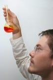 Wissenschaftler bei der Arbeit lizenzfreies stockfoto