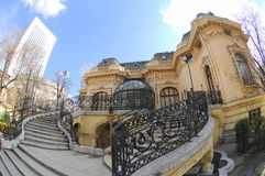 Wissenschaftler bringen in Bucharest unter Stockfotografie