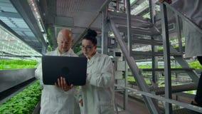 Wissenschaftler in den weißen Mänteln mit einem Laptop gehen entlang den Korridor des Bauernhofes mit Hydroponik und besprechen d stock video