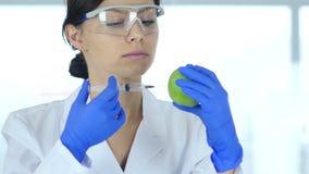 Wissenschaftler, der Apfel mit chemischer Lösung für Experiment einspritzt stock footage
