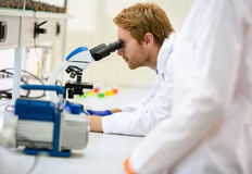 Wissenschaftler, der auf Mikroskop schaut Lizenzfreies Stockfoto