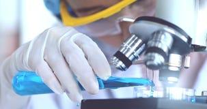 Wissenschaftler, der blaue Flüssigkeit vom Reagenzglas in Petri unter Mikroskop für ihre Experimente gießt stock video footage