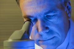 Wissenschaftler in der blauen Leuchte Stockfotografie