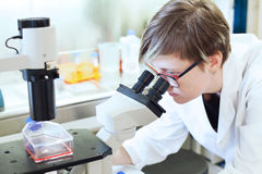 Wissenschaftler, der das Mikroskop betrachtet Stockbild