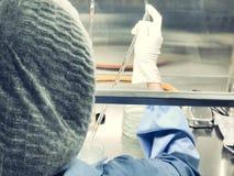Wissenschaftler, der die Mikrobiologie prüft im blätterigen Luftströmungskabinett am mikrobiologischen Limit-Test-Raum tut Selekt stockfotografie