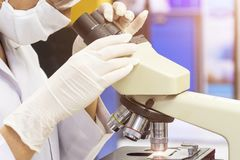 Wissenschaftler, der durch ein Mikroskop in einem Labor schaut Sie ist d stockfotografie