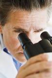 Wissenschaftler, der durch Mikroskop schaut Stockbilder