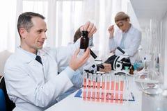 Wissenschaftler, der Glas mit Chemikalie hält lizenzfreies stockfoto