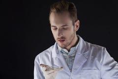 Wissenschaftler, der Petrischale betrachtet Lizenzfreie Stockbilder