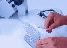 Wissenschaftler, die eine Forschung in einem Labor leiten lizenzfreie stockbilder