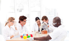 Wissenschaftler, die in einem Labor arbeiten Stockfotografie