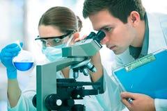Wissenschaftler, die am Labor arbeiten Stockfotos
