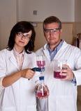 Wissenschaftler, die labware anhalten Stockbilder