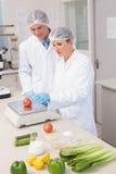 Wissenschaftler, die Tomate wiegen lizenzfreie stockbilder