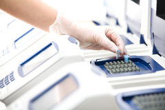 Wissenschaftler, DNA-Exemplar, weiße Handschuhe, Stockfoto