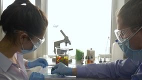 Wissenschaftler mischen Farbreagenzien im Großen Glas an Arbeitsplatz am medizinischen Labor im hellen Licht stock video