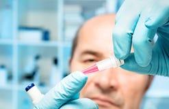 Wissenschaftler mit biologischer Probe Lizenzfreie Stockfotos