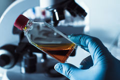 Wissenschaftler mit einer Kulturflasche in der Hand Stockfotos