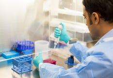 Wissenschaftlerexperimentieren Lizenzfreies Stockbild