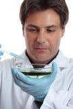 Wissenschaftlerforscherprüfung, die Laborarbeit analysiert stockbild