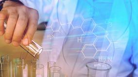 Wissenschaftlerhand mit Laborrohren stockbild