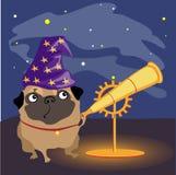 Wissenschaftlerhundpug, der die Sterne aufpasst vektor abbildung