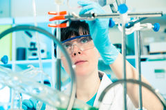 Wissenschaftliche Forscherholding Stockfotos