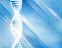 Wissenschaftlicher Vektorhintergrund des DNA-Strangs Lizenzfreies Stockbild