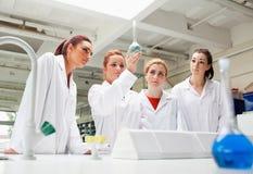 Wissenschaftskursteilnehmer, die eine Flüssigkeit in einer Flasche betrachten lizenzfreie stockfotos