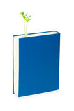 Wissenskonzept mit Büchern Lizenzfreie Stockbilder
