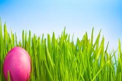 Śwista Wielkanocny jajko Zdjęcia Royalty Free