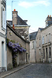 Wistaria on the wall. Street in the old town of Angers, France Stock Photography