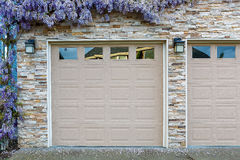 Wisteria Flowers by Home Garage Doors. Wisteria flowers in full bloom by house front garage doors in Spring season stock photos