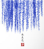 Wisteria hand drawn with ink on white background. Traditional oriental ink painting sumi-e, u-sin, go-hua. Contains. Hieroglyph - happiness, eternity, beauty Stock Photos