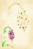 Wisteria painted watercolors vector illustration