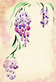 Wisteria painted watercolors stock illustration