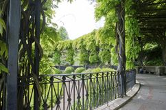 Wisteria Pergola. The century old wisteria pergola in the Conservatory Garden in Central Park in New York City Stock Image