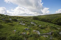 Environment of Wistman`s Wood - an ancient landscape on Dartmoor, Devon, England. Wistman`s Woof is one of the last vestiges of ancient forest in England. It royalty free stock image
