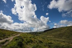Trail from Wistman`s Wood - an ancient landscape on Dartmoor, Devon, England. Wistman`s Woof is one of the last vestiges of ancient forest in England. It lies in stock photos