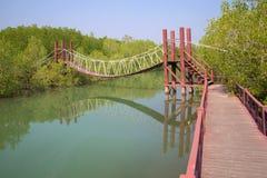 Wisząca drewniana turystyczna ścieżka w mangrowe Otoczenia Hua Hin, Tajlandia Fotografia Royalty Free