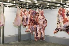 wiszący mięso Fotografia Royalty Free